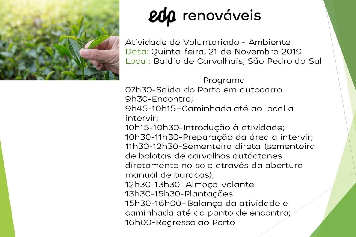 Atividade de Voluntariado - Ambiente