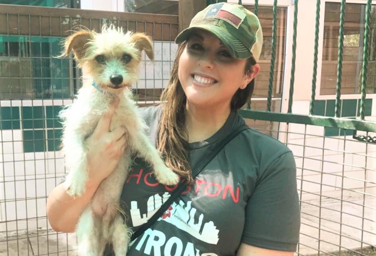Volunteer at Houston Humane Society