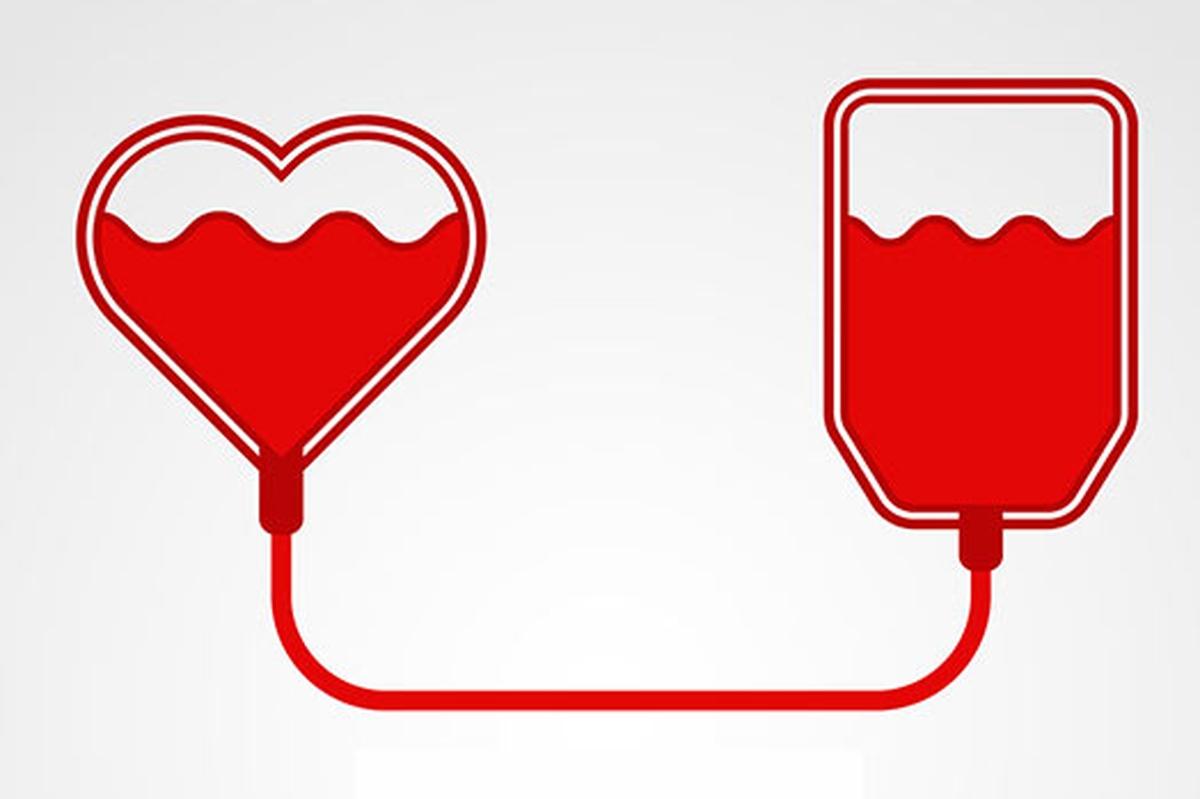 XII Campanha Doação de Sangue Doação de Sangue