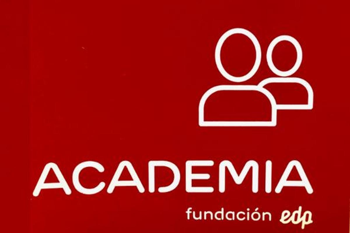 Voluntariado  Madrid -  Colaboradores Academia Fundación EDP