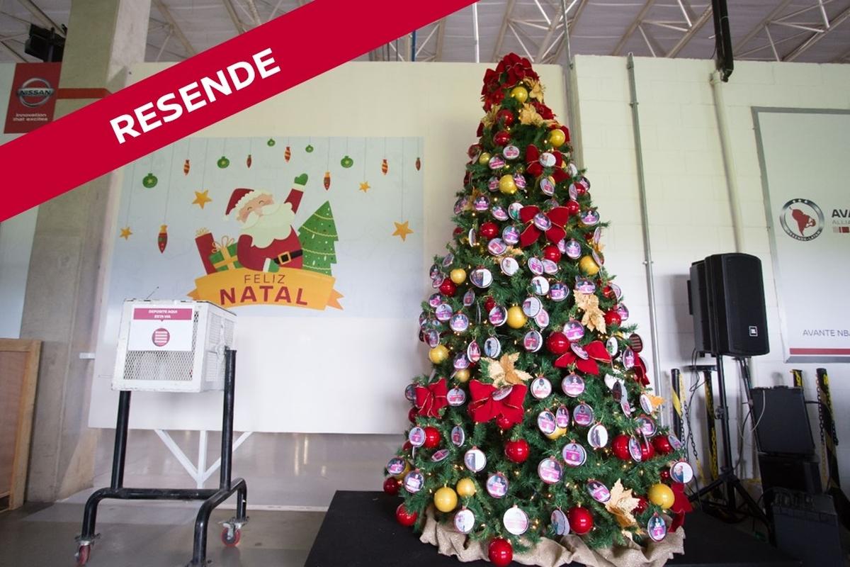Montagem da Árvore de Natal