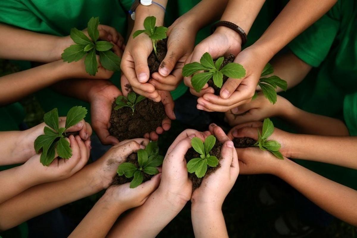 Sustentabilidade e Qualidade de vida