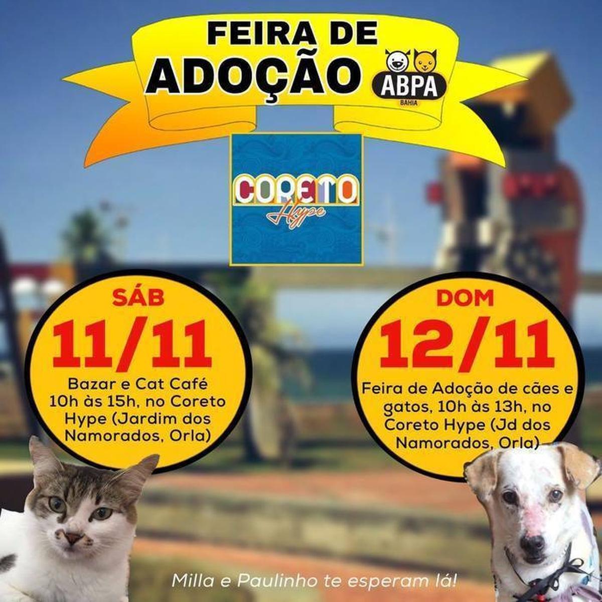 Feira de Adoção de Cães e Gatos da ABPA/BA