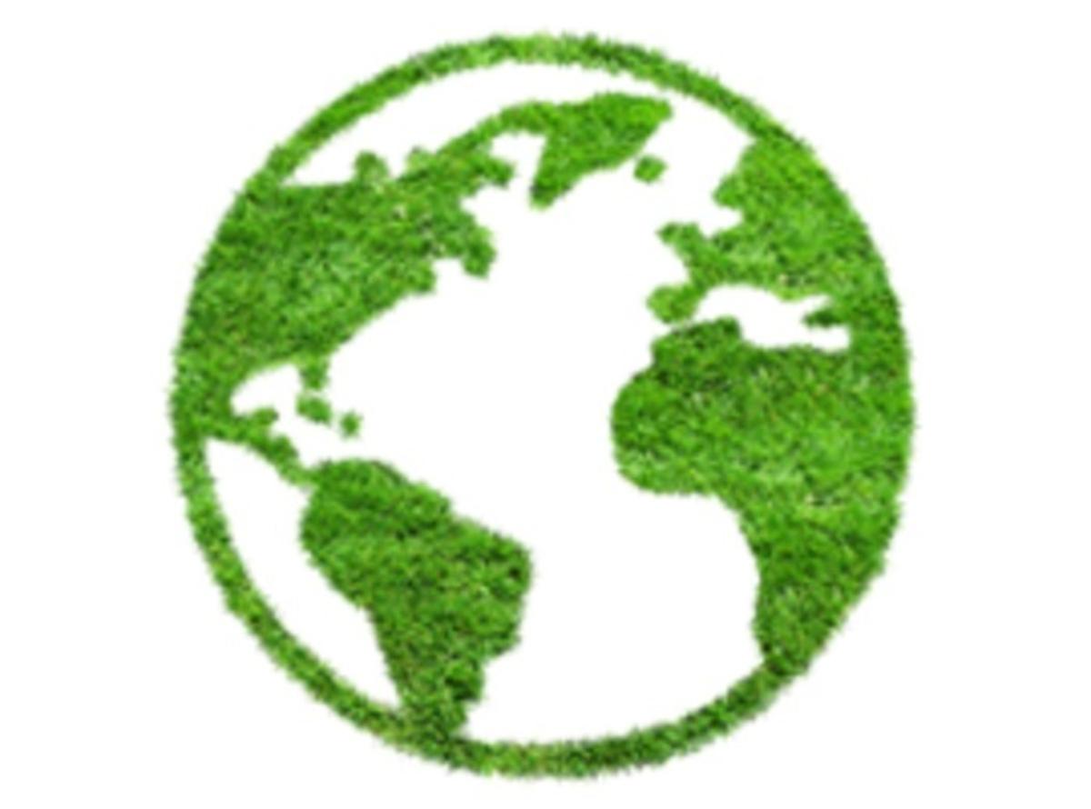 Oficina 2 - Ecologia Interior e Compostagem Urbana