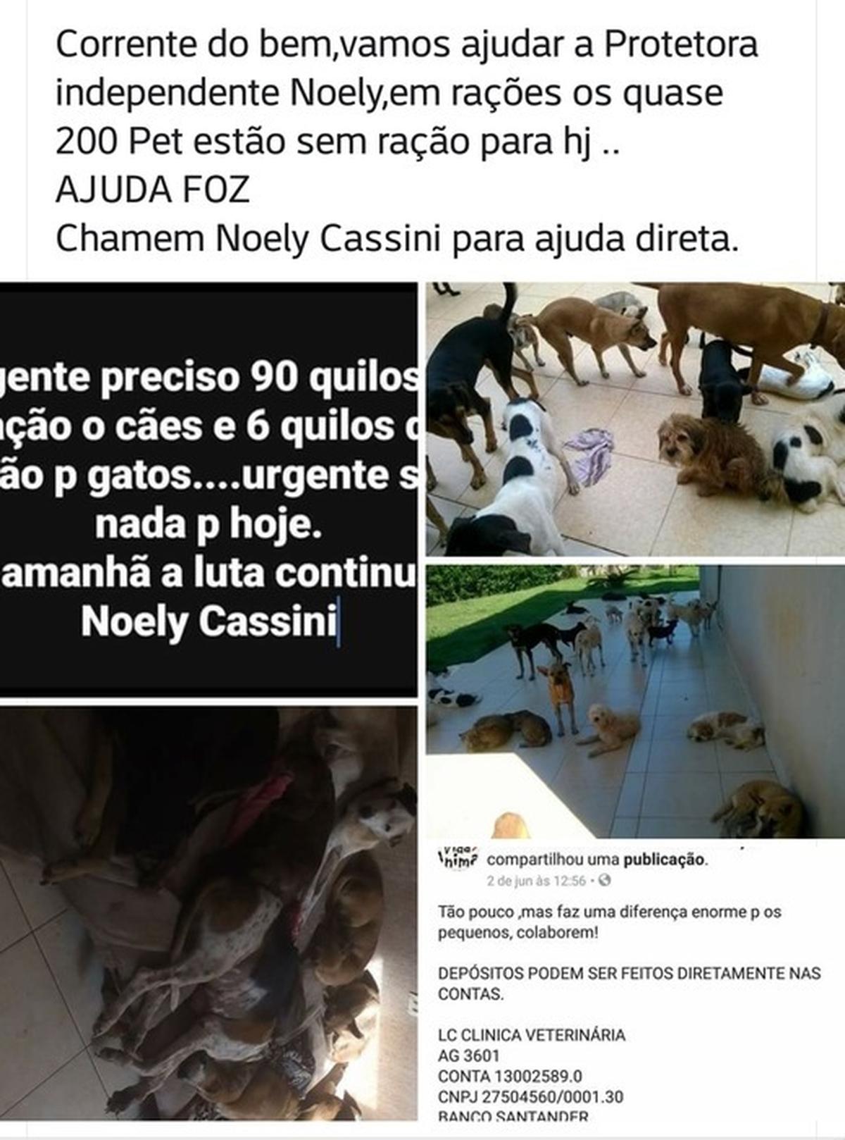 Ração para ONG VIDA ANIMAL FOZ DO IGUAÇU