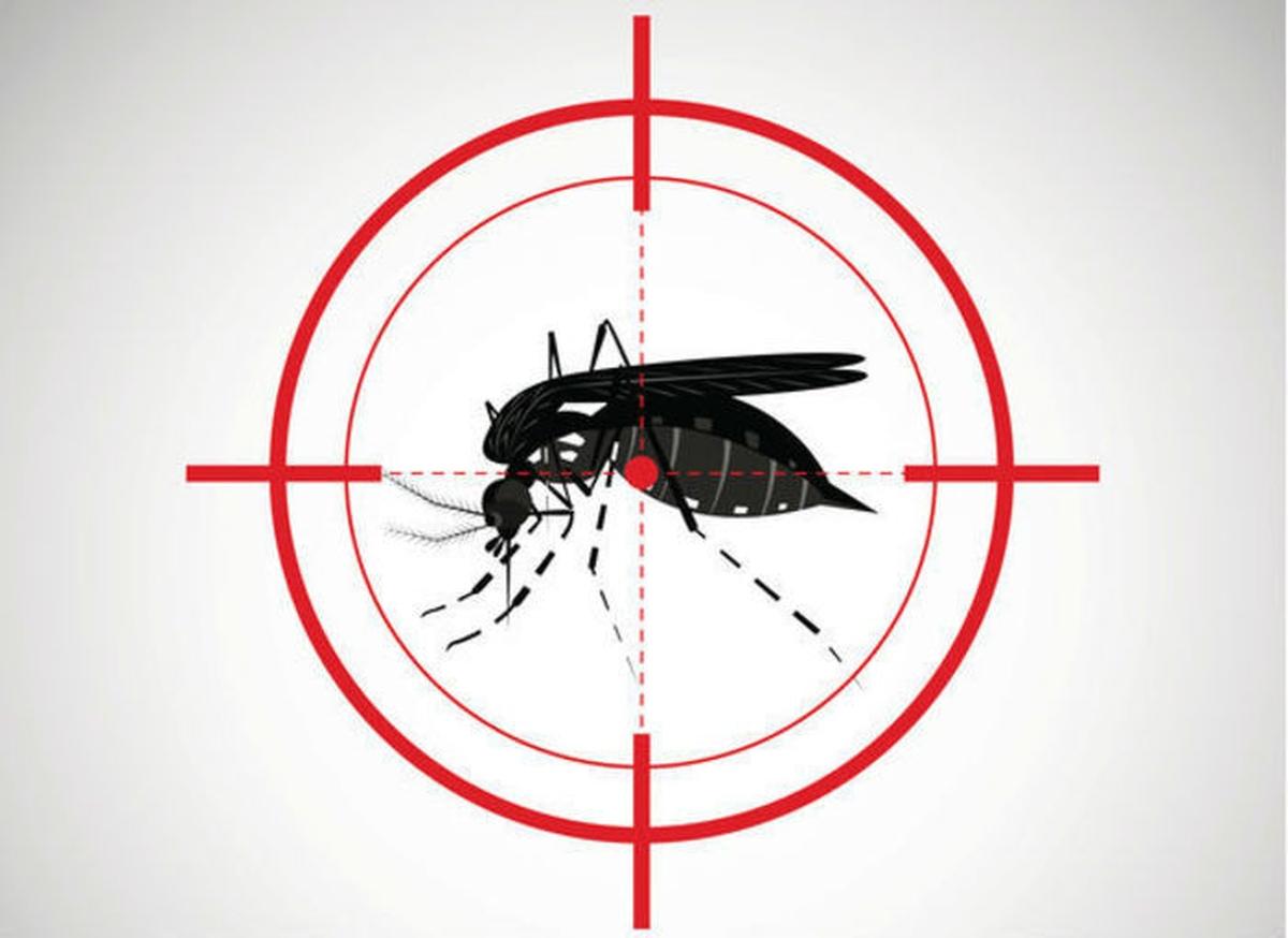 Diga NÃO ao Aedes Aegypti