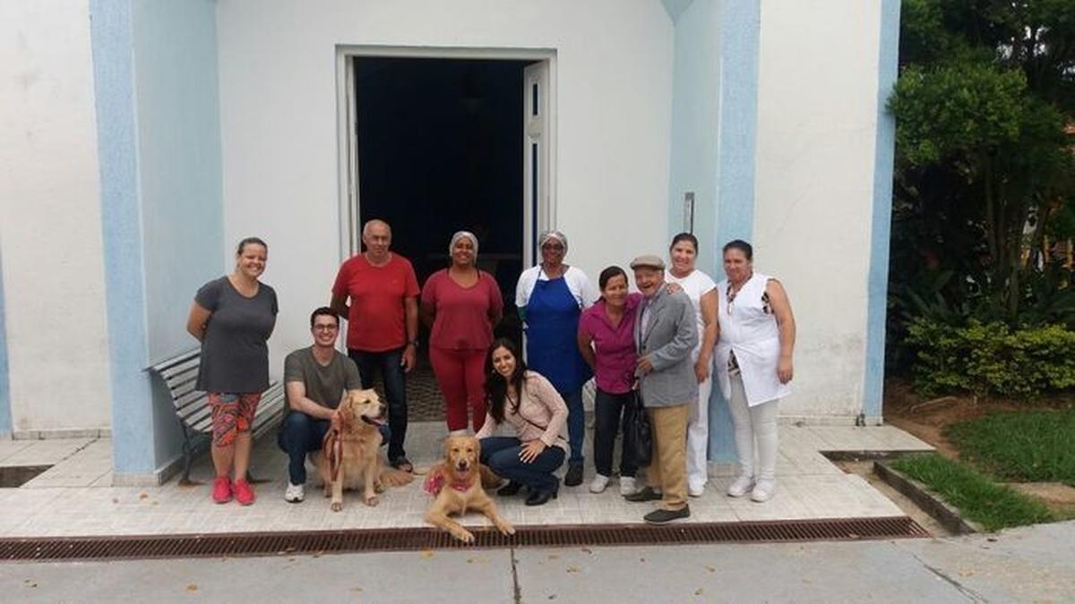 operação cães do bem