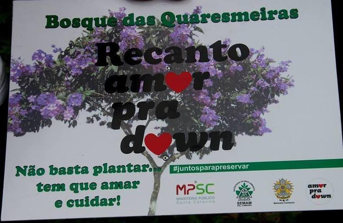 Plantio de árvores (Bosque Down)