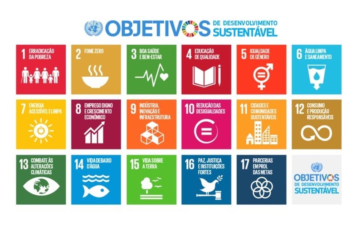 17 Objetivos do Desenvolvimento Sustentável da ONU - Botando a mão na massa!