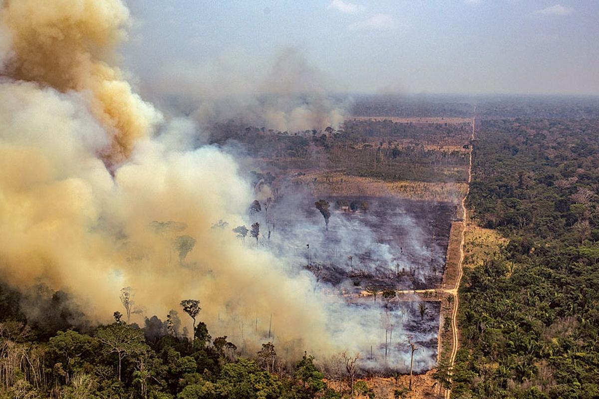 EDPR pela Amazônia! (Brazil)