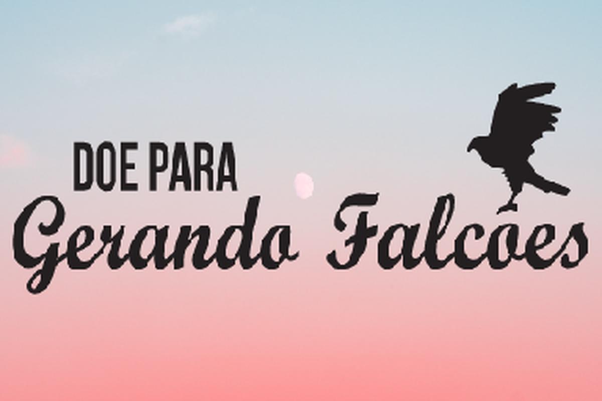 BAZAR SOCIAL DA GERANDO FALCÕES