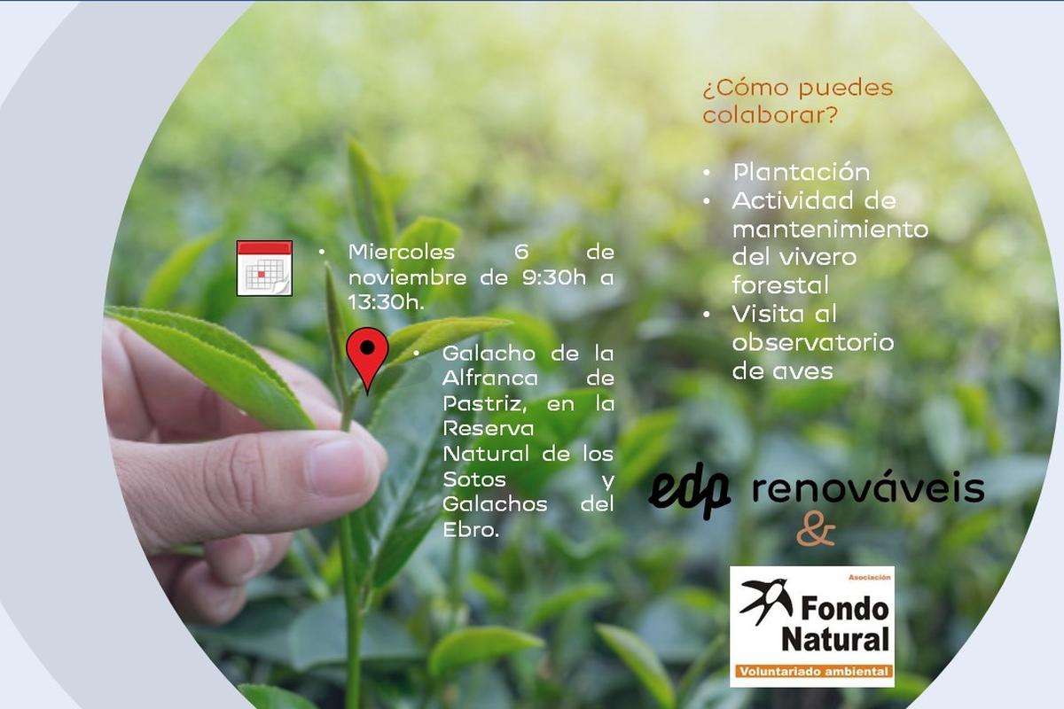 Voluntariado Medioambiental Zaragoza
