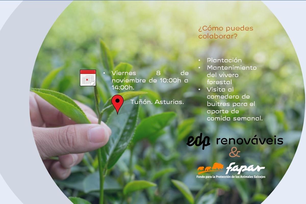 Voluntariado Medioambiental Asturias