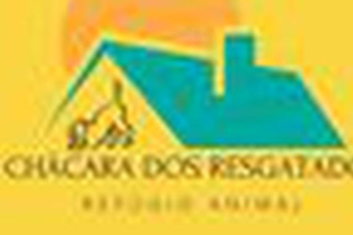 Doação de ração para abrigo de animais