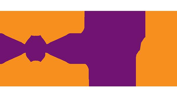 Logo V2V.net